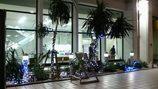那覇空港のクリスマス 2008