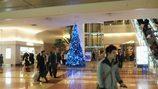 羽田空港のクリスマス 2008
